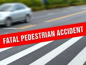 Stella Yeh Killed In Pedestrian Accident On 805 Freeway In Clairemont Sa Ay Morning